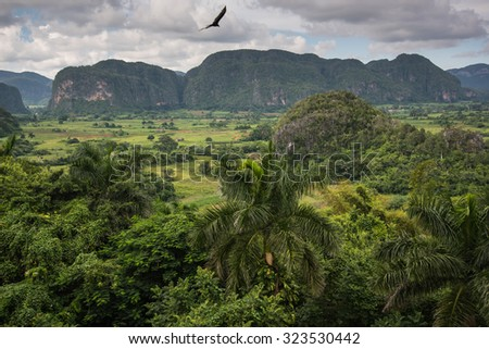 Panoramic view over landscape with mogotes in Valley Vinales,Cuba - stock photo