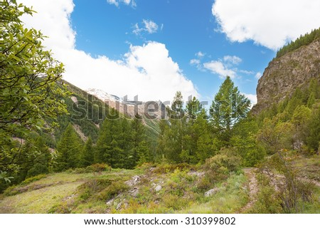 Panoramic views of the mountains and the valley in the park of Gran Paradiso, Italy