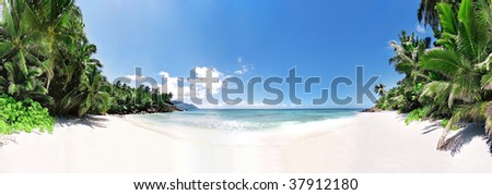 Panoramic vue of idle beach with palmtrees - stock photo