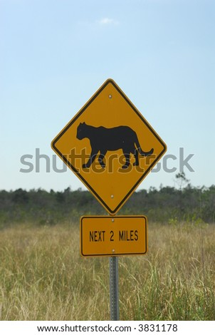 Panther Crossing - stock photo