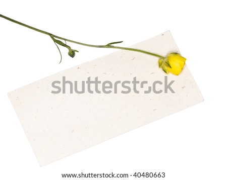 paper note with yellow flower - stock photo