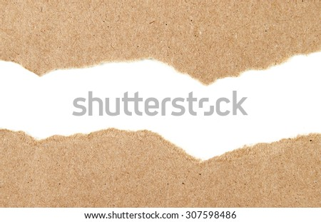 Paper Shred - stock photo