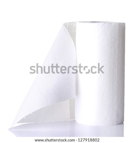 Paper towel roll , isolated on white - stock photo
