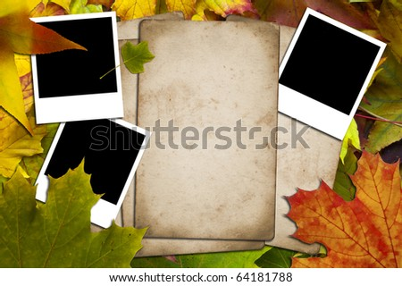 Papers and photos on a background of autumnal leaves - stock photo