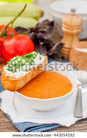 Pappa al pomodoro, Tuscan Tomato, Zucchini, Basil and Bread Cream Soup, copy space for your text - stock photo