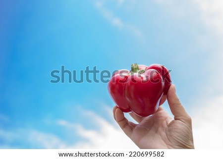 Paprika held in hand with sky in the background - stock photo