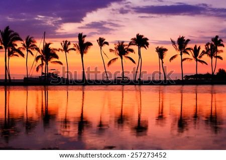 Paradise beach sunset landscape with tropical palm trees silhouettes. Summer travel vacation getaway colorful concept photo from sea ocean water at Hawaiian beach, Big Island, Hawaii, USA. - stock photo