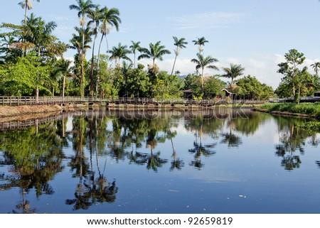 Paradise like landscape in Jamaica - stock photo