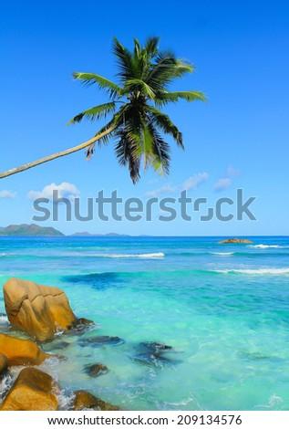 Paradise Resort Wallpaper  - stock photo
