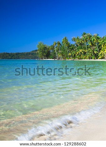 Paradise seashore. Summer beach scene.