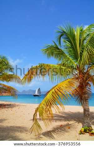 Paradise tropical beach on Island of St. Vincent - stock photo