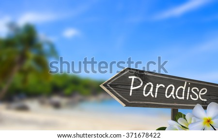 Paradise wooden sign and blurry white sand beach background with frangipani flowers. Ocean and sunshine