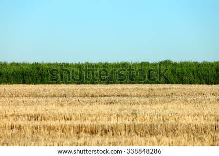 Parallel elements in a rural farm field, including the edge of a green wheat field, blue sky, and wheat stubble left uncultivated on fallow ground. - stock photo