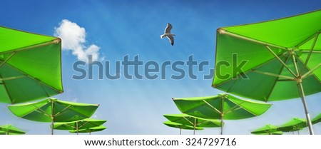Parasols on the beach with blue sky and sea gull - stock photo