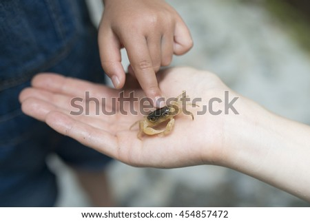 Parent and child that found the river crab