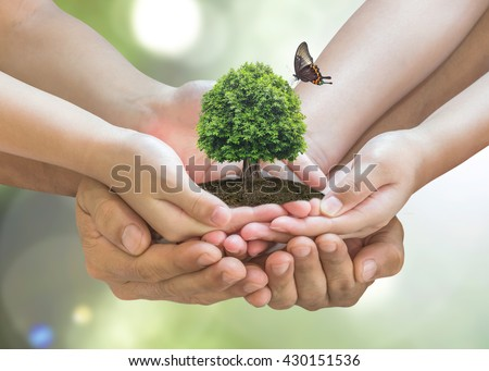 Parent and children planting together big tree on family hands w/ butterfly on blur nature greenery background: World environment day reforesting eco bio arbor CSR ESG ecosystems reforestation concept - stock photo