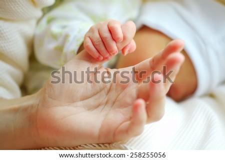 parental hand holds palm of newborn baby - stock photo