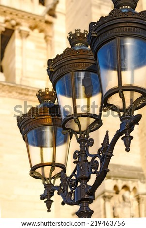 Paris close up view of ornate iron antique street lights