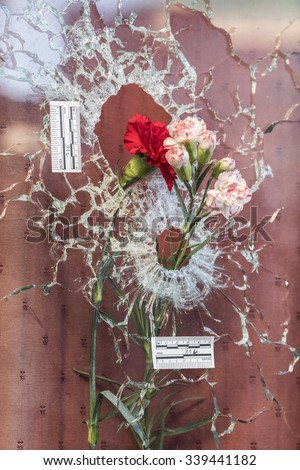 PARIS, FRANCE - NOVEMBER 15, 2015 :  A pink posed in the impact of a Kalashnikov bullet in the bar hotel Le Carillon near the Bataclan theater after the terrorist attack in Paris, November 13, 2015. - stock photo
