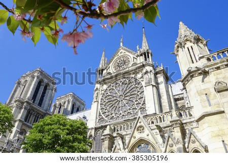 Paris, Notre Dame cathedral with blossomed tree in  France - stock photo