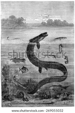 Paris region during the Cretaceous sea, End of the reign of the great mosasaur, vintage engraved illustration. Earth before man  1886. - stock photo