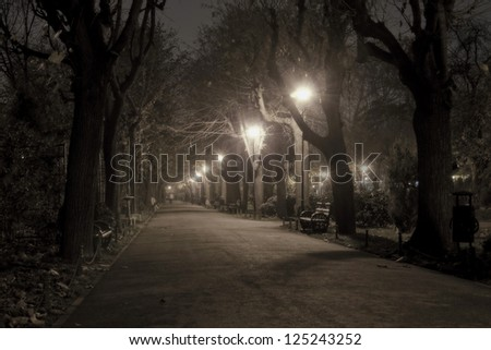 Park alley by night - stock photo