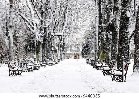 Park alley in winter with a row of red benches
