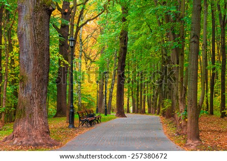 Park area with good road and benches - stock photo