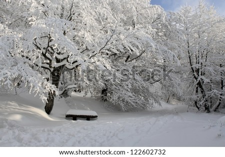 Park bench at winter - stock photo