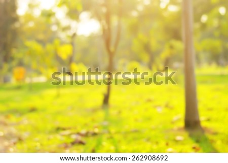 Park blur background. - stock photo