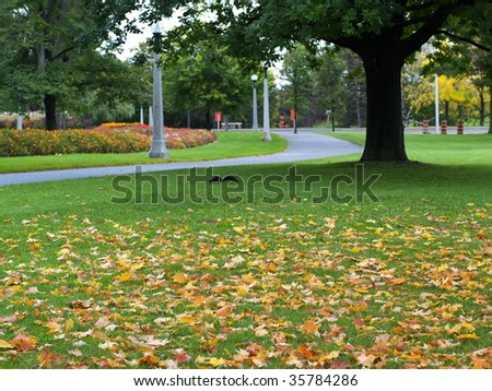 Park in autumn - stock photo