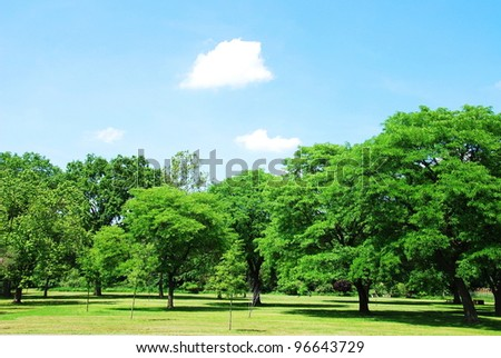 park in summer - stock photo