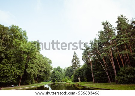 Park In Summer With Pond, Lake And Alley. Tree, Green Grass, Spring