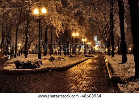 Park in winter - stock photo