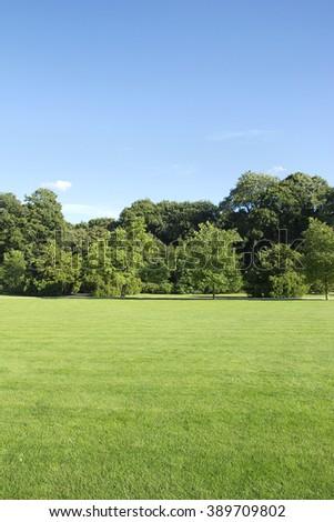 park landscape - stock photo