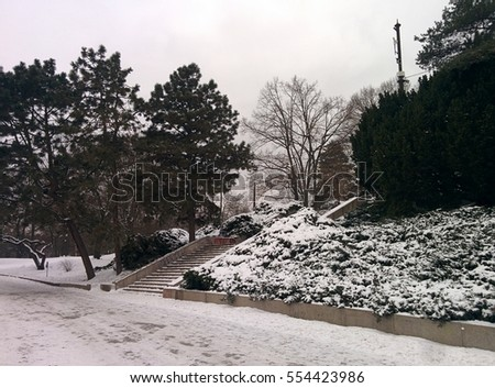 Park outdoor. Winter countryside. Nature. Winter mood. Winter weather. Snowy weather. Snow in Prague. Cold theme.