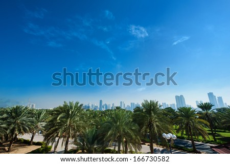 Park, palm trees with views of the city - stock photo