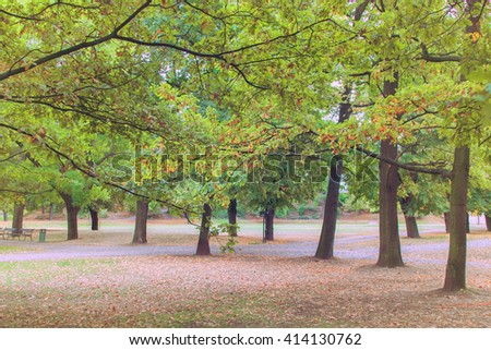 Park with green trees, benches, lawns and paths. Toned - stock photo