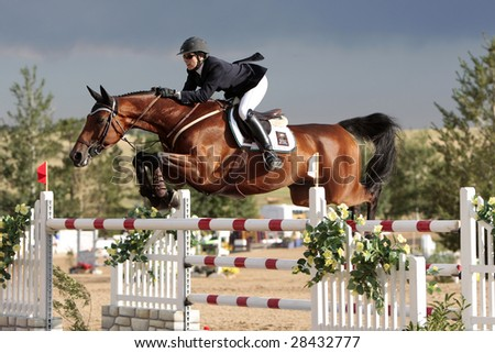 PARKER, CO - July 19:  Successful California rider Susan Artes (aboard Presto B) takes fourth place in the $40,000 Rocky Mountain Grand Prix on July 19, 2008 in Parker, CO at the Colorado Horse Park. - stock photo