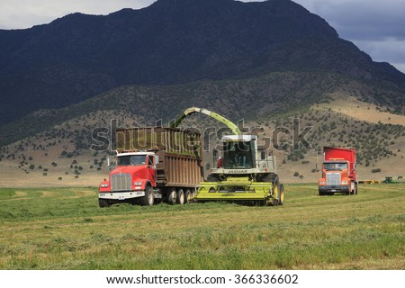 Parowan, UT, USA - July 29, 2010: A farm crew harvests alfalfa hay silage for dairy feed with a powerful Claas Jaguar Forage Harvester.