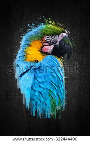 Parrot bird on dark background. Paint effect - stock photo