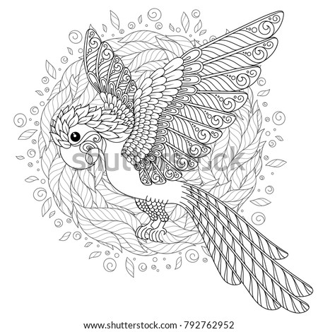 Tropical Bird Coloring Book For Adult And Older Children Page