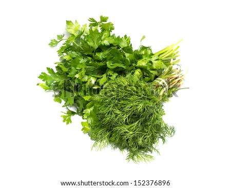 parsley and dill isolated on white - stock photo