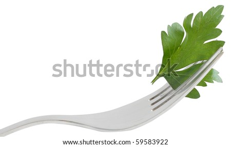 Parsley isolated on a white bg