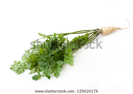parsley leaves and root