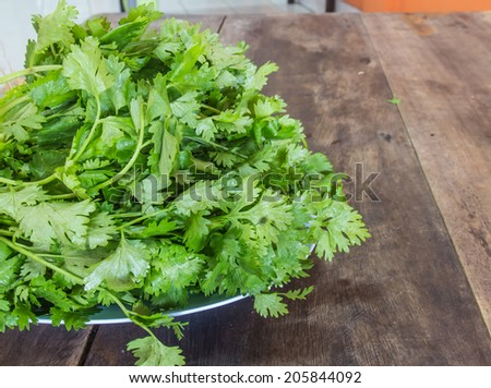 Parsley on a plate placed on a wooden table. - stock photo