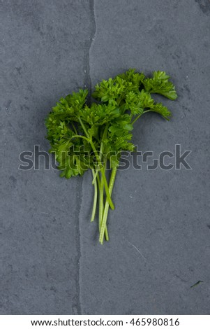 Parsley on grey cutting board, stock picture