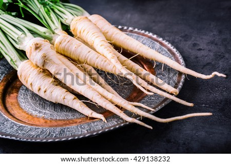 Parsnip. Fresh parsnip. Parsnip with parsley on concrete board. Several fresh parsnip pieces with parsley top. Parsley herbs. Fresh vegetable. - stock photo