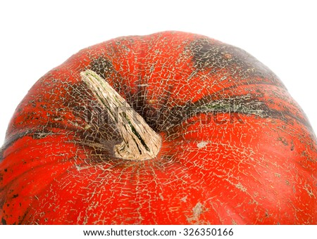 Part of pumpkin isolated on white background. Close-up view.