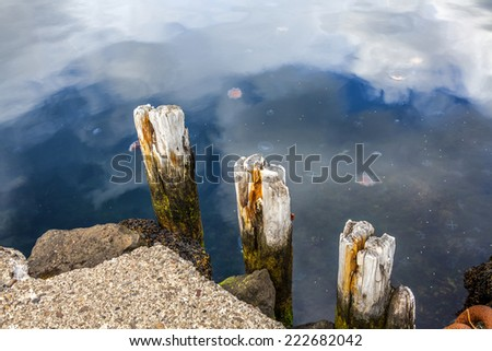 Part of the Wharf in the harbor Seydisfjordur with jellyfish in the water - stock photo